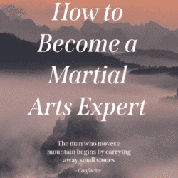 Martial Arts Expert Title Infographic